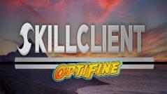 skillclient110optiweb